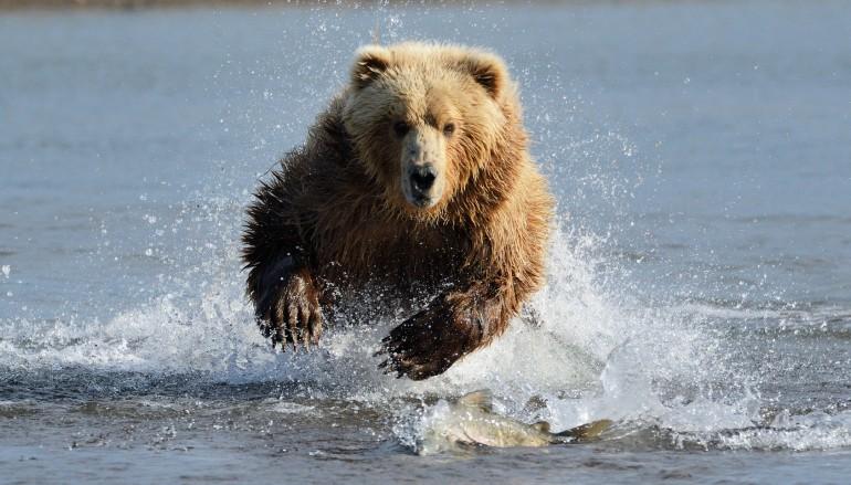 Front Running: Die Jagd auf Indexanleger ist eröffnet