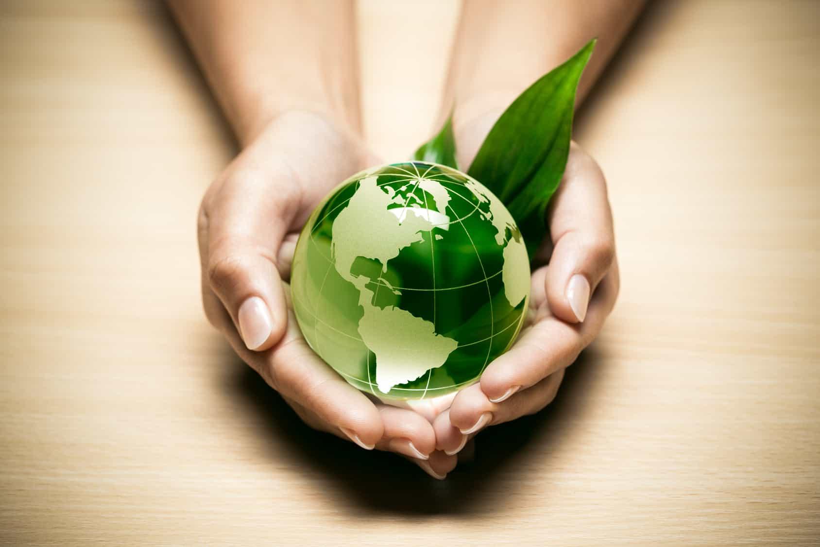 Zwei Hände halten eine grüne Erde.