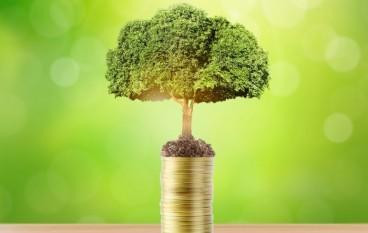 Crashkurs Anleihen: Grundlagen und Einsatzmöglichkeiten – kostenloses Webinar