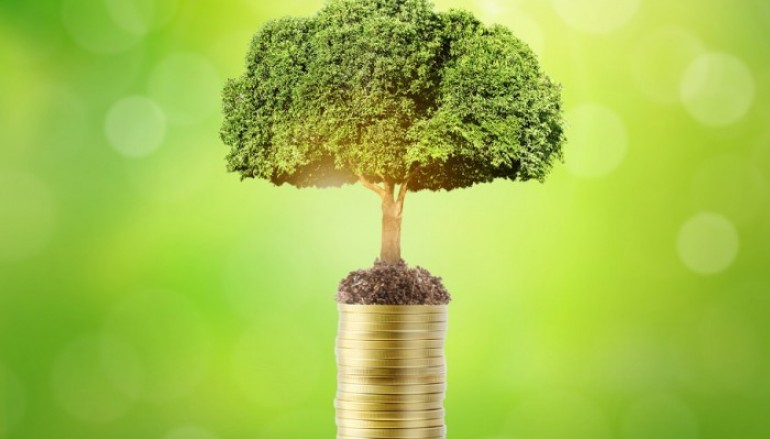 Die 4 Wege, um endlich mehr Geld zu verdienen
